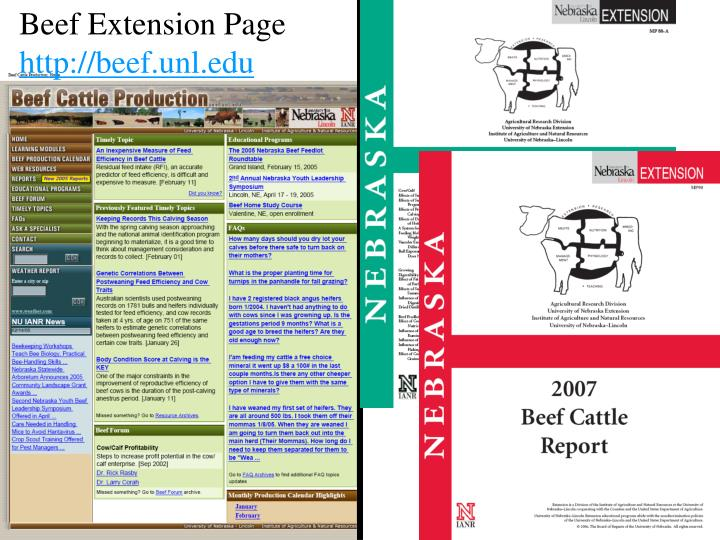 Beef Extension Page