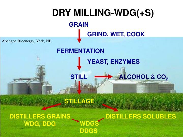 DRY MILLING-WDG(+S)