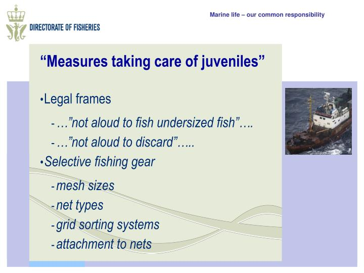 """""""Measures taking care of juveniles"""""""