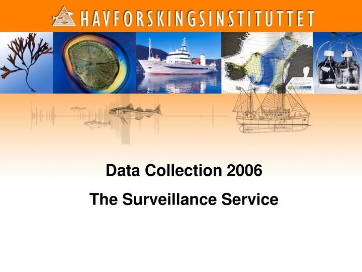 Data Collection 2006