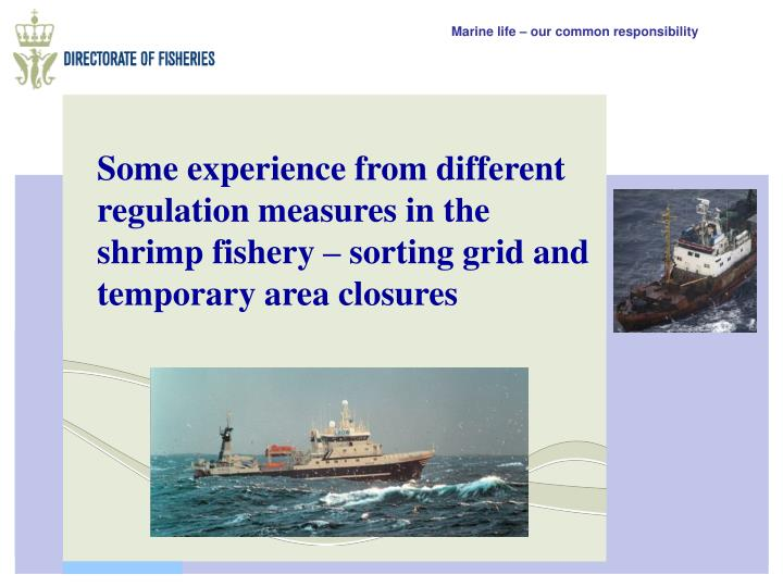 Some experience from different regulation measures in the shrimp fishery – sorting grid and temporary area closures