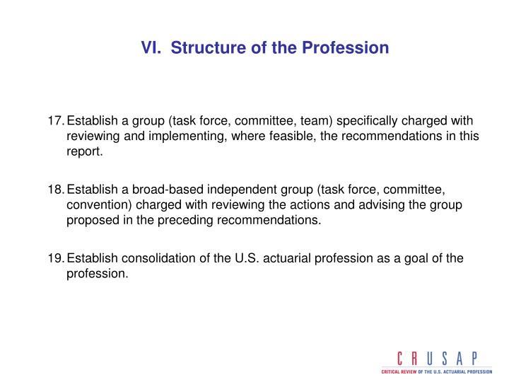 VI.  Structure of the Profession
