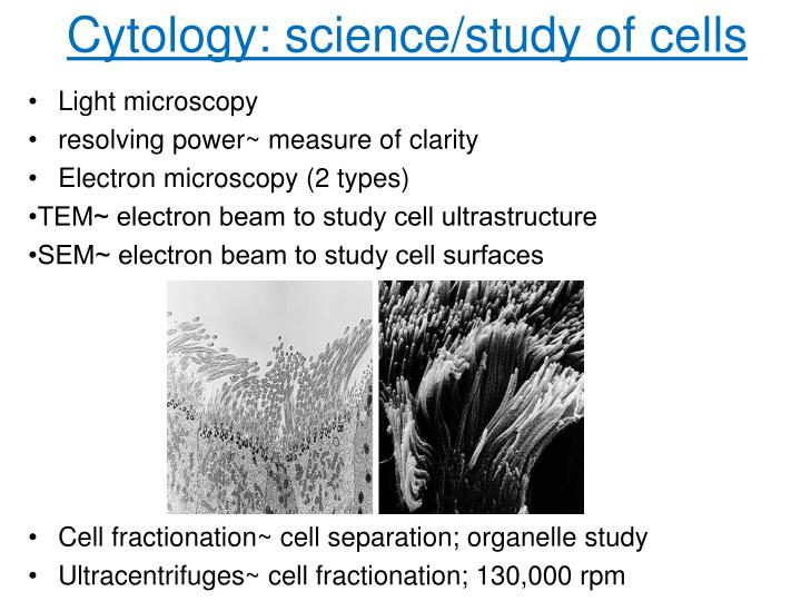 Cytology: science/study of cells