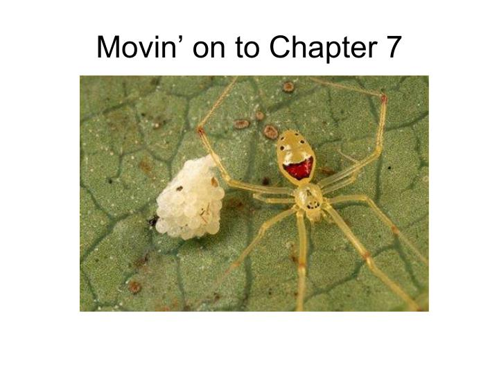 Movin' on to Chapter 7