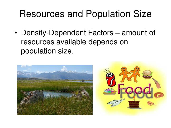 Resources and Population Size