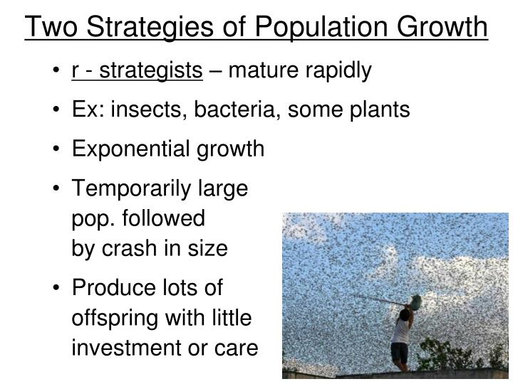 Two Strategies of Population Growth