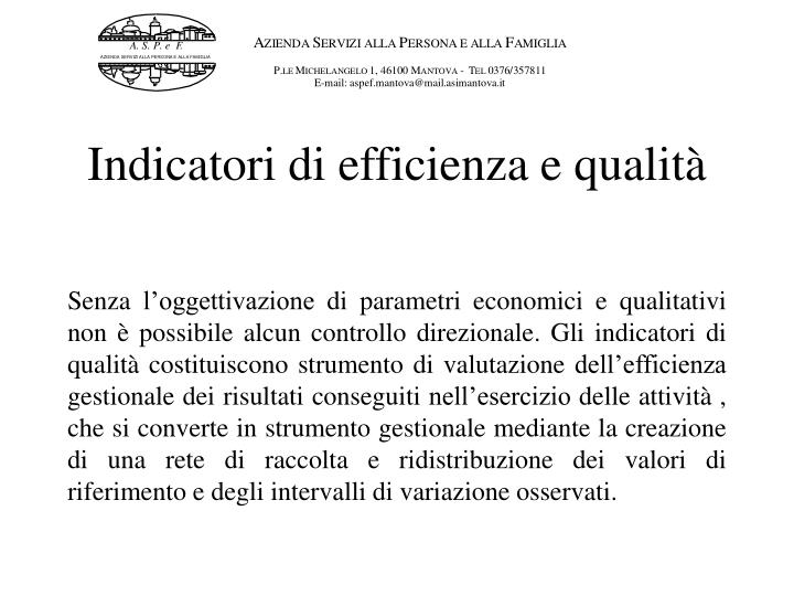 Indicatori di efficienza e qualità