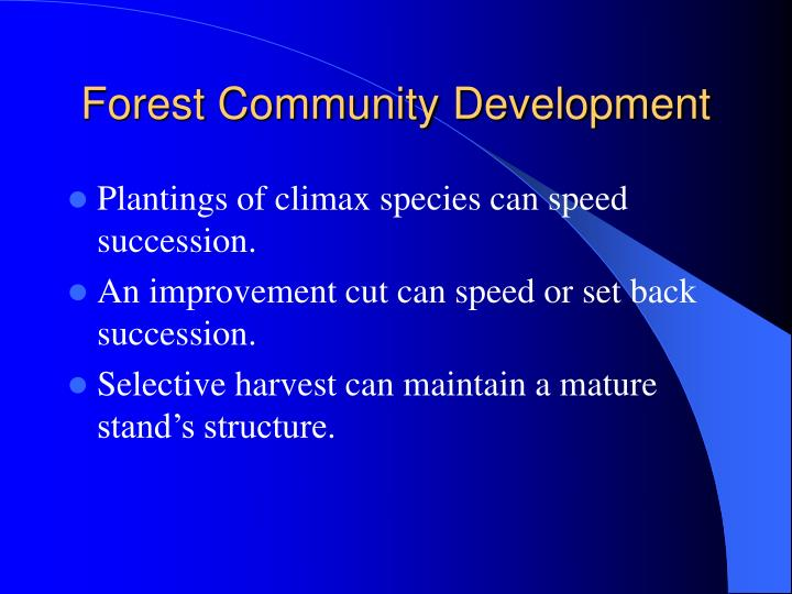 Forest Community Development