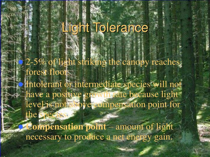Light Tolerance