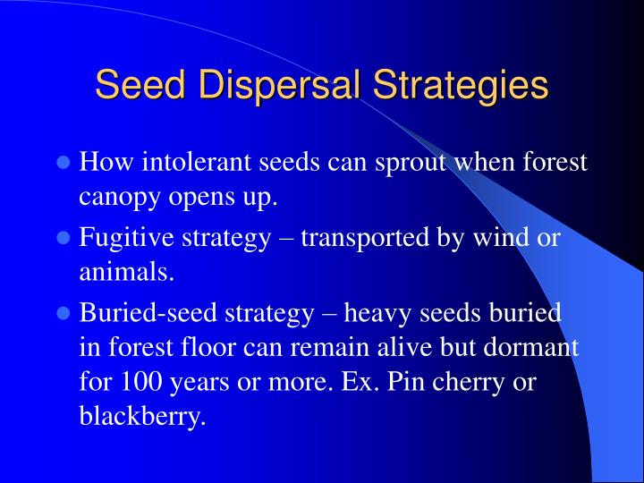 Seed Dispersal Strategies
