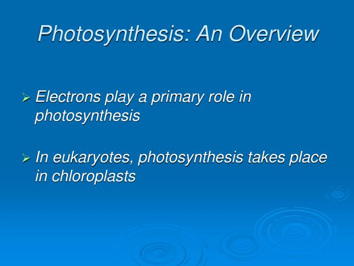 Photosynthesis an overview