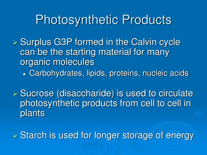 Photosynthetic Products