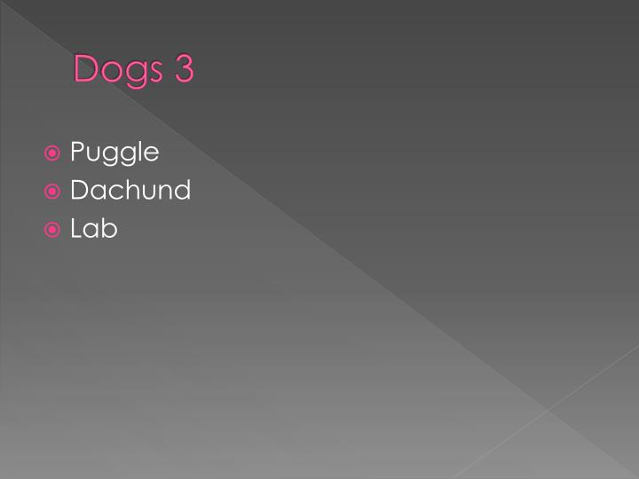 Dogs 3
