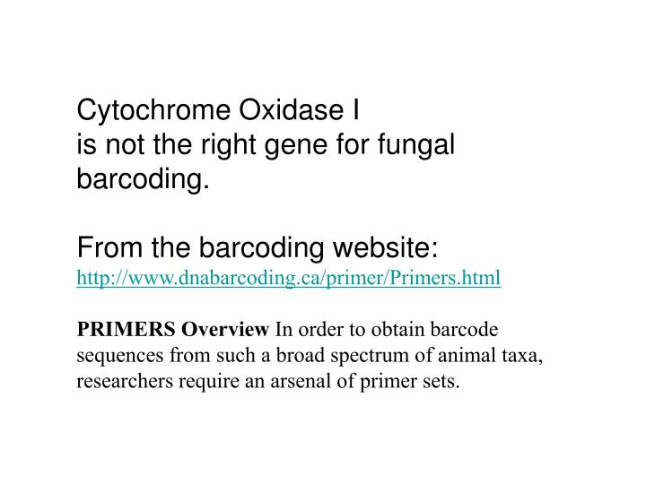 Cytochrome Oxidase I