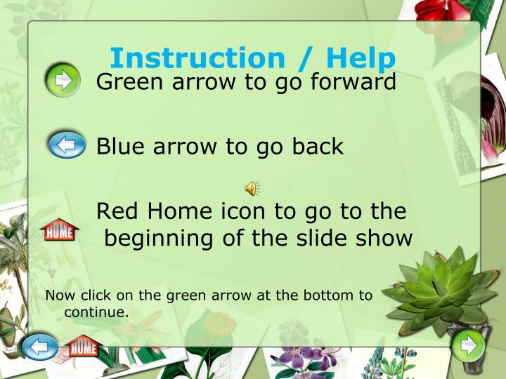 Instruction help