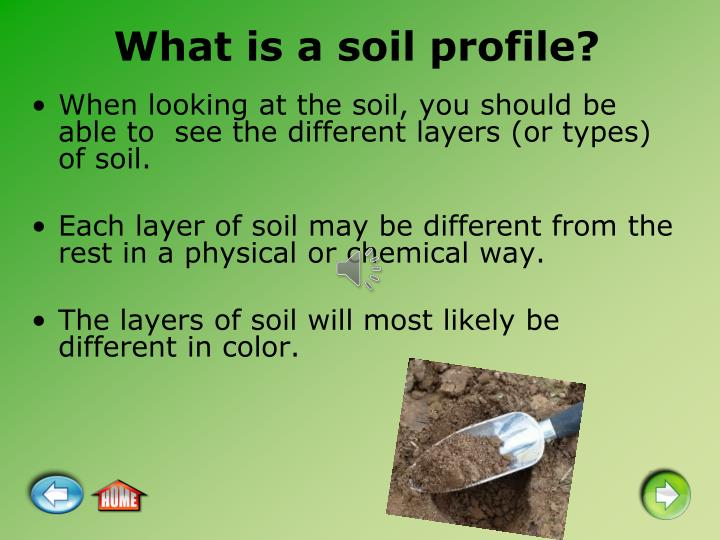 What is a soil profile?