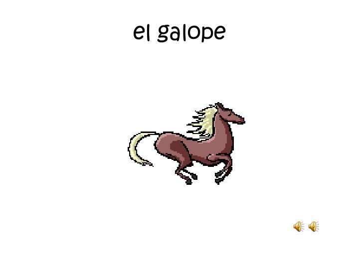 el galope