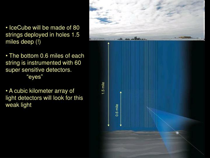 IceCube will be made of 80 strings deployed in holes 1.5 miles deep (!)