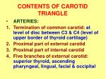 contents of carotid triangle1