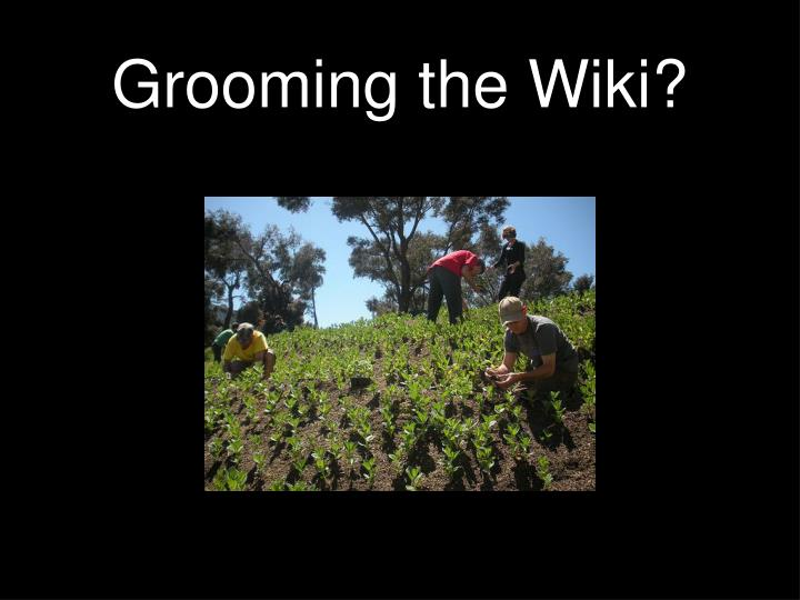 Grooming the Wiki?