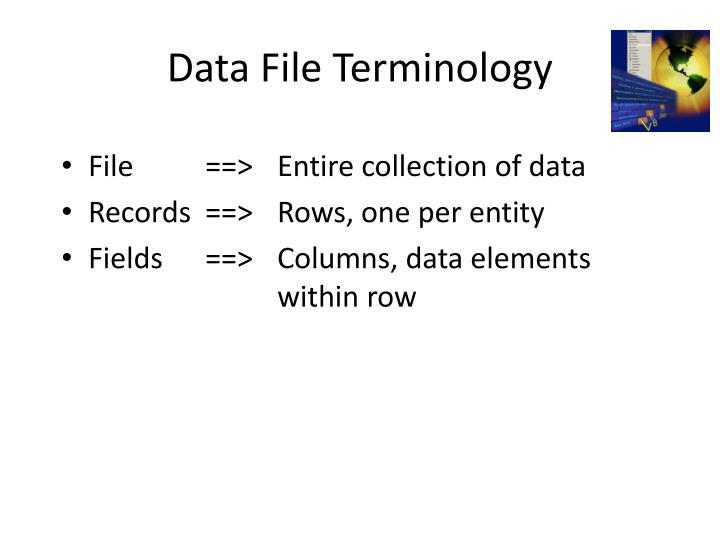Data file terminology