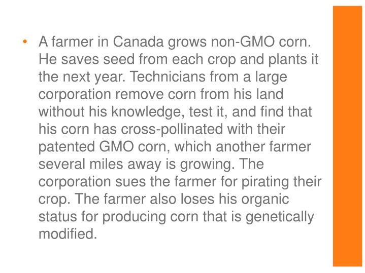 A farmer in Canada grows non-GMO corn. He saves seed from each crop and plants it the next year. Technicians from a large corporation remove corn from his land without his knowledge, test it, and find that his corn has cross-pollinated with their patented GMO corn, which another farmer several miles away is growing. The corporation sues the farmer for pirating their crop. The farmer also loses his organic status for producing corn that is genetically modified.