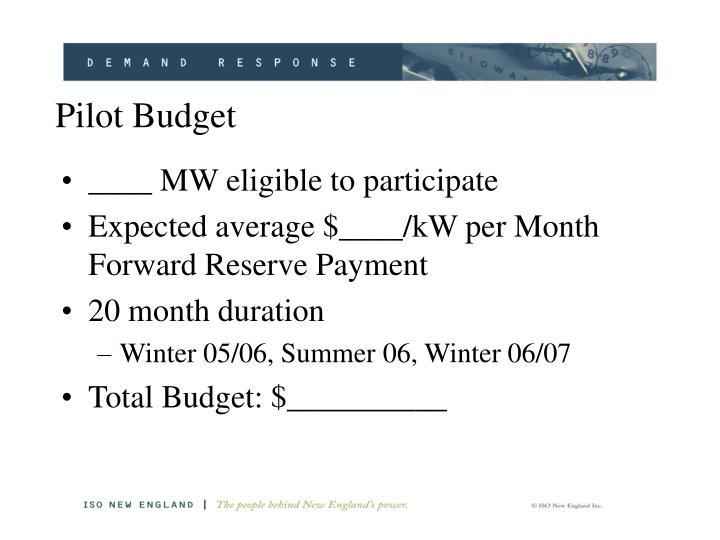 Pilot Budget