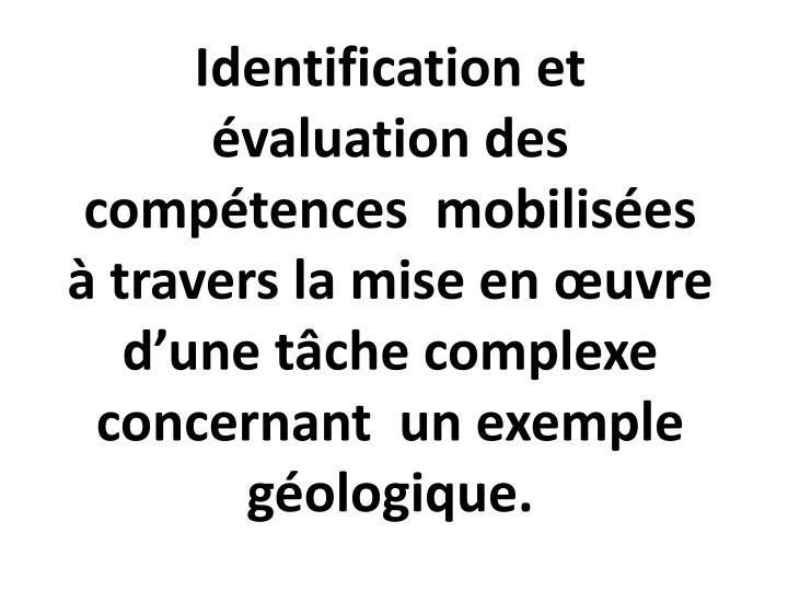 Identification et évaluation des compétences  mobilisées à travers la mise en œuvre d'une tâche complexe concernant  un exemple géologique.