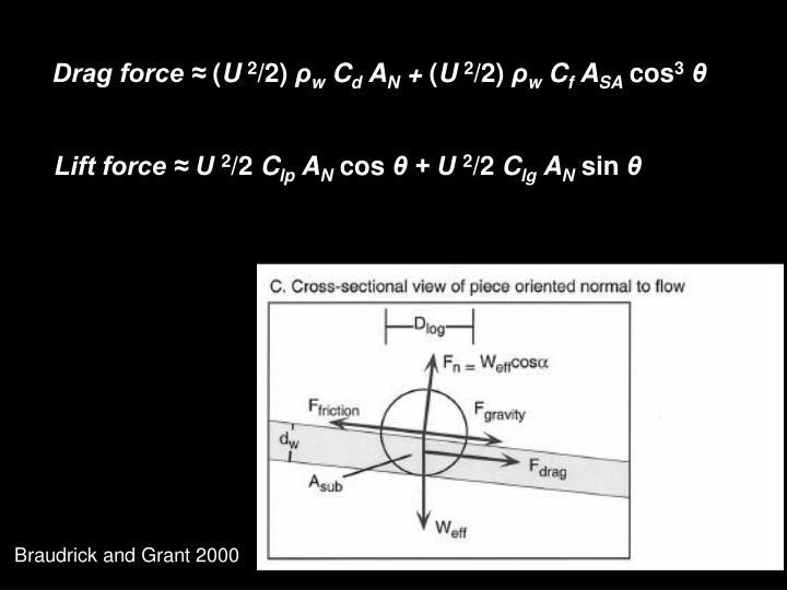Drag force ≈