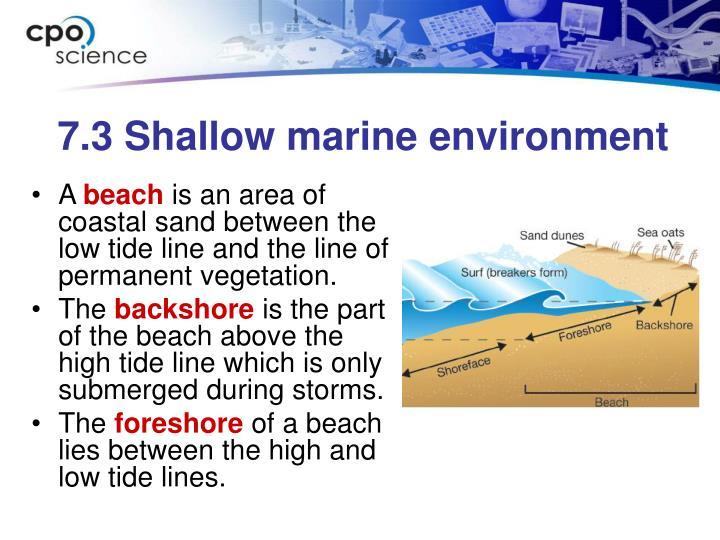 7.3 Shallow marine environment