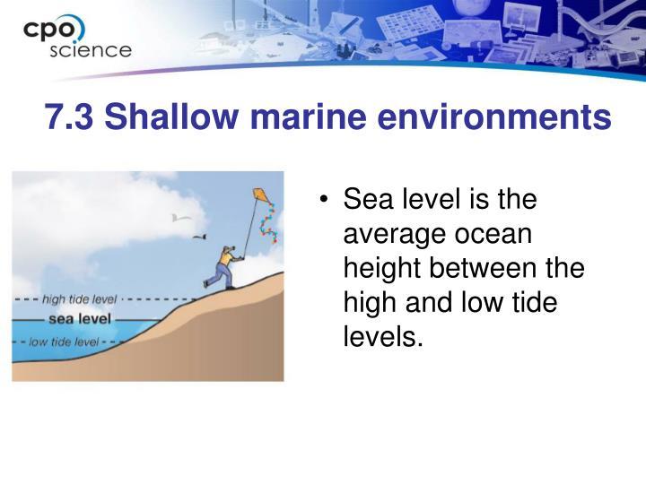 7.3 Shallow marine environments