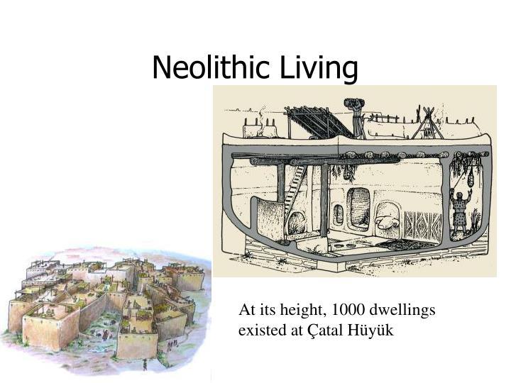 Neolithic Living