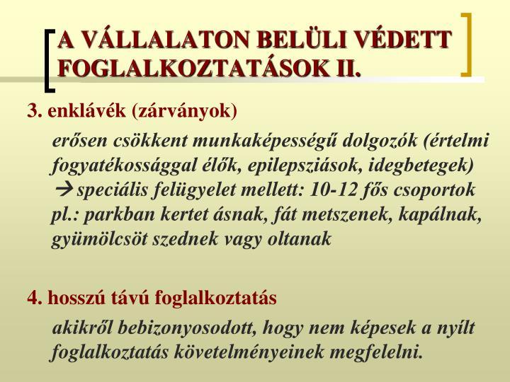 A VÁLLALATON BELÜLI VÉDETT FOGLALKOZTATÁSOK II.
