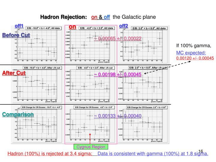 Hadron Rejection: