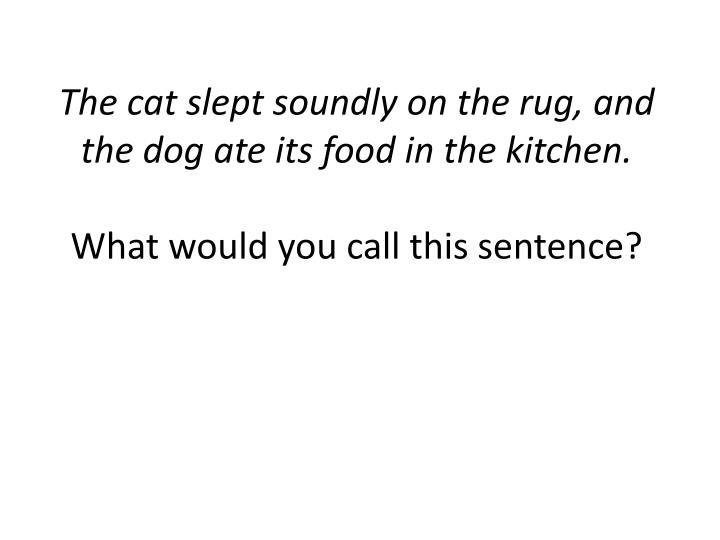 The cat slept soundly on the rug, and the dog ate its food in the kitchen.