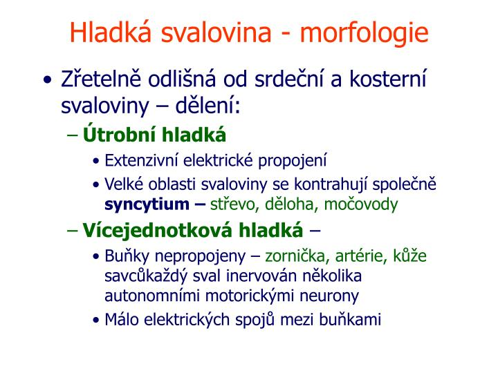 Hladká svalovina - morfologie
