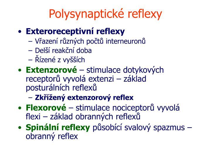 Polysynaptické reflexy