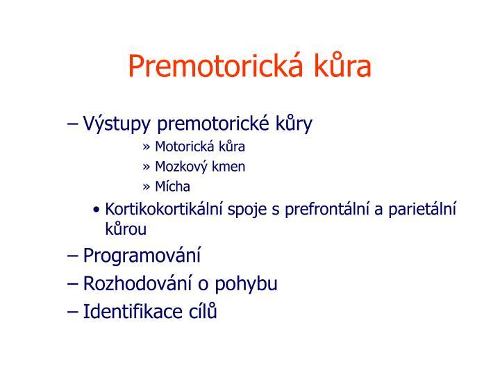 Premotorická kůra