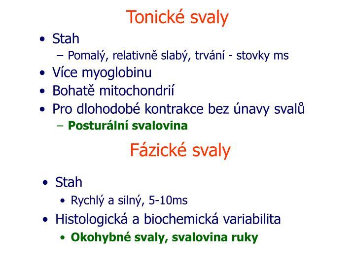 Tonické svaly