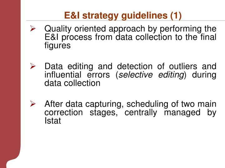 E&I strategy guidelines (1)