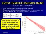 vector mesons in baryonic matter