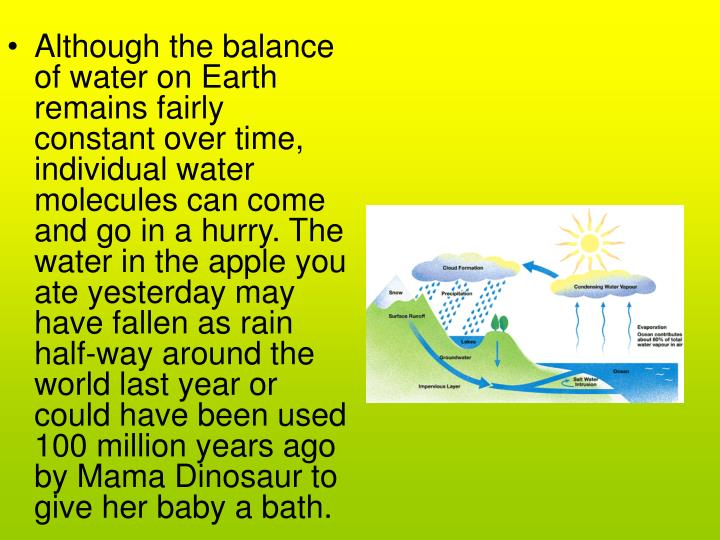 Although the balance of water on Earth remains fairly constant over time, individual water molecules can come and go in a hurry. The water in the apple you ate yesterday may have fallen as rain half-way around the world last year or could have been used 100 million years ago by Mama Dinosaur to give her baby a bath.