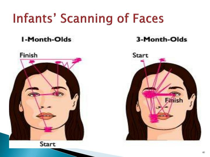 Infants' Scanning of Faces
