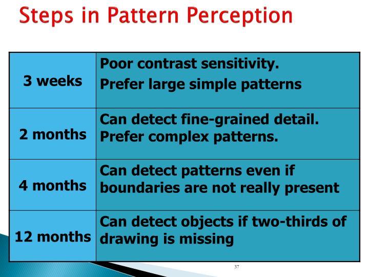 Steps in Pattern Perception