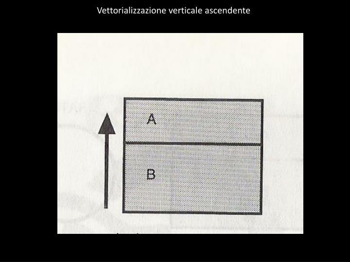 Vettorializzazione verticale ascendente