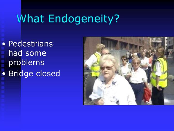 What Endogeneity?