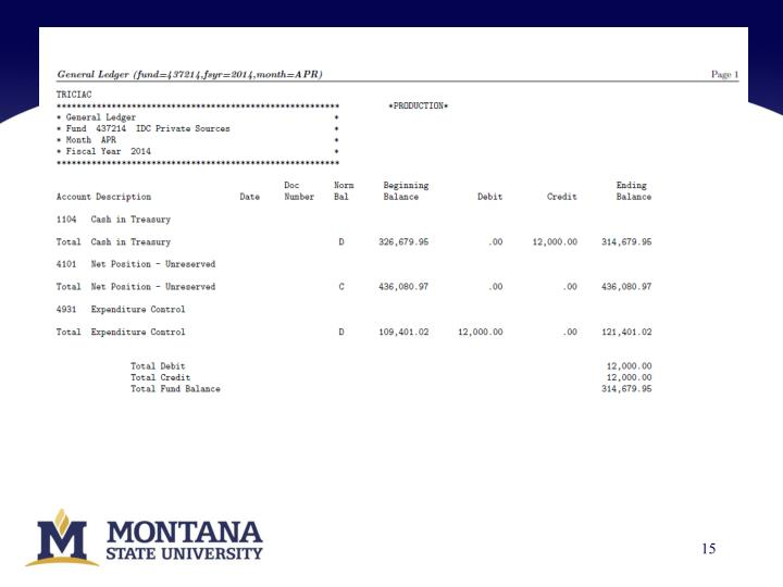 Finance Reports for Reconciling Designated Funds (cont.)