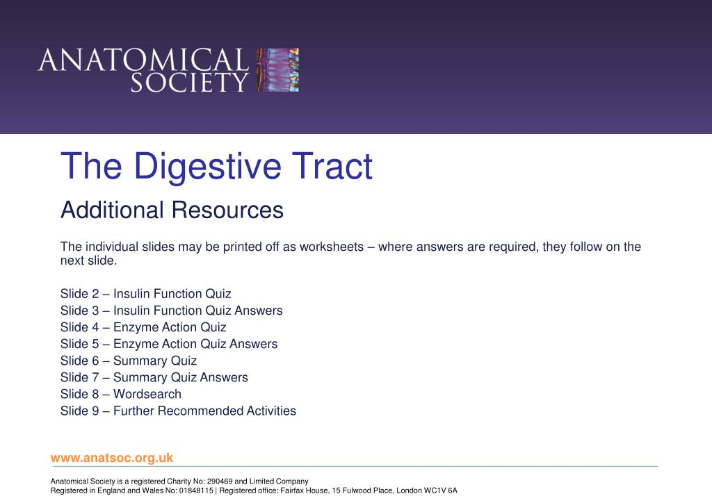 PPT - The Digestive Tract PowerPoint Presentation, free download -  ID:5355782