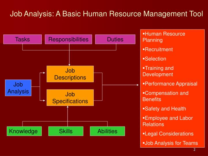 Job analysis a basic human resource management tool