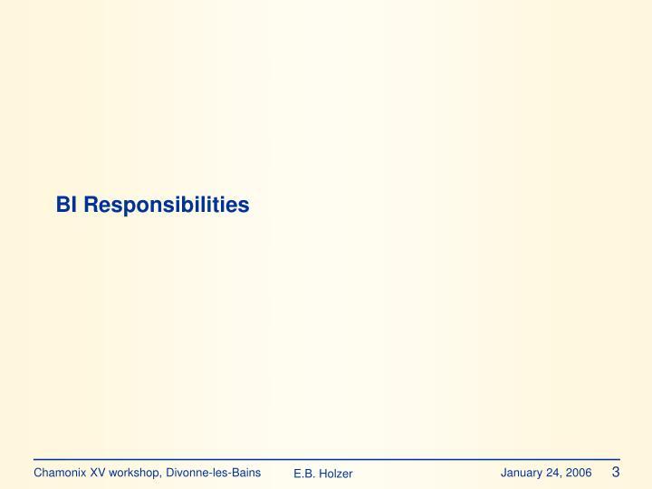 Bi responsibilities